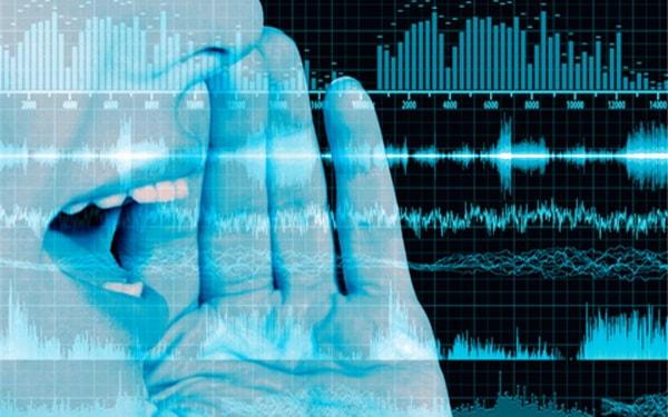 Идентификация звука из базы данных звуков.